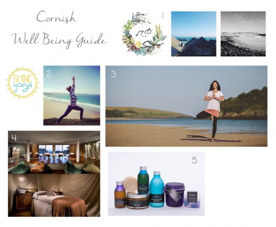 cornish well being guide